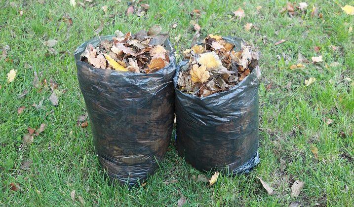 Changement de fréquence de la collecte des déchets verts