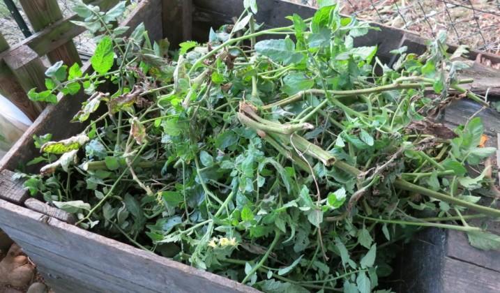 Déchets végétaux: reprise de la collecte hebdomadaire