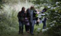 Balade au bois du Moulin des Marais