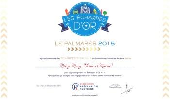 Echarpe d'Or 2015 : la Ville félicitée