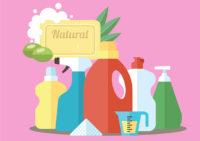 Création de produits d'entretien bio