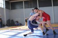 Championnat régional de lutte