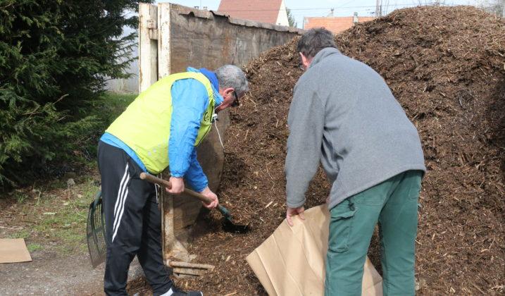 Distribution gratuite de compost