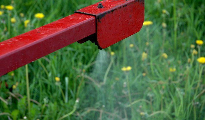 Interdiction de produits à base de glyphosates : la décision de l'ANSES conforte les arrêtés  anti-pesticides