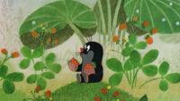 Festival ciné junior : La Petite taupe aime la nature