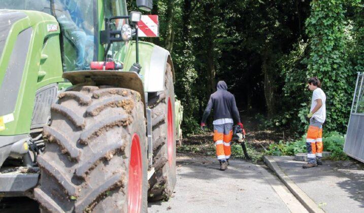 Bois du Moulin des Marais : les travaux démarrent
