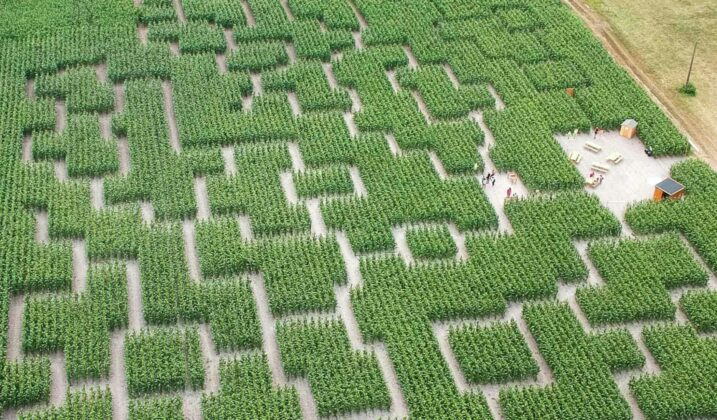 Labyrinthe du Val d'Europe